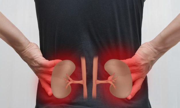 Descubra como diferenciar dor na coluna e nos rins